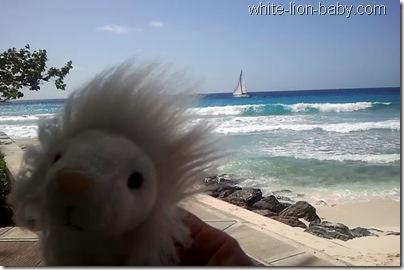Barbados-Video