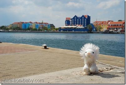Löwenbaby mit dem Stadtteil Otrabanda im Hintergrund