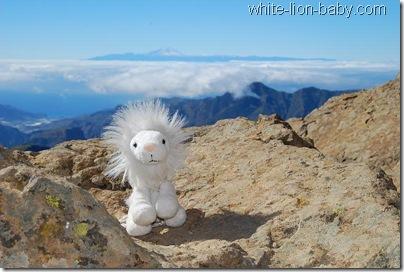 Auf dem Gipfelplateau des Roque Nublo