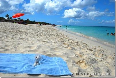 Am Eagle Beach