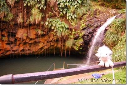 Am Annandale-Wasserfall