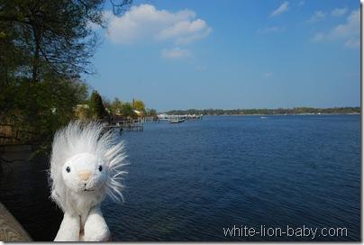 Blick über die Havel