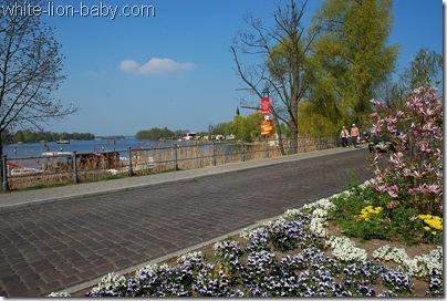 Brücke mit Blüten