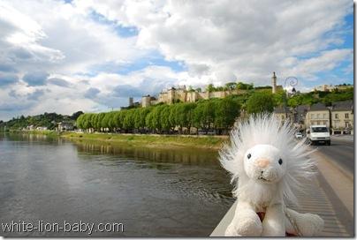 Blick vom Fluss aus zur Burg