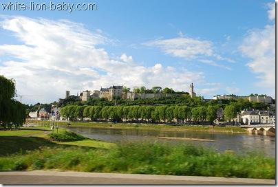 Blick über den Fluss zur Burg
