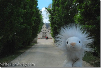 Zum Eingang von Schloss Azay-le-Rideau