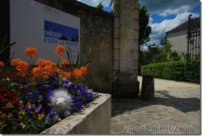 Zum Schloss Azay-le-Rideau