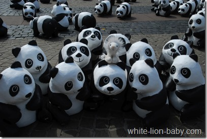 Inmitten der Pandas