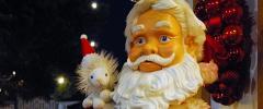 In der Lüneburger Heide zur Weihnachtszeit
